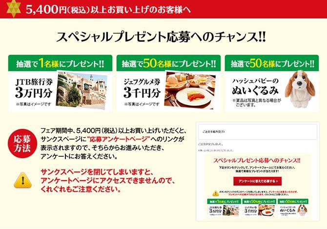 5400円以上お買い上げのお客様へ スペシャルプレゼント応募へのチャンス